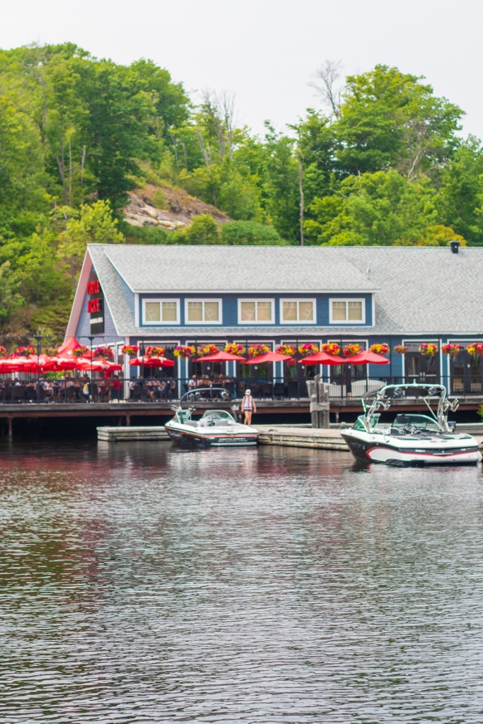 Turtle Jacks Lake Rosseau Muskoka Port Carling Jack Janssen Chestnut Park Real Estate